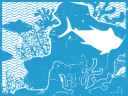 Coastal and Marine Ecosystems