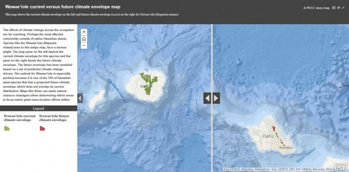 Website data map